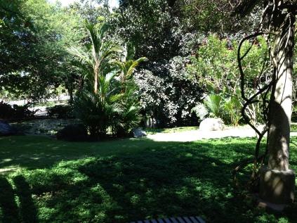 Bamboo Shadows in the Garden
