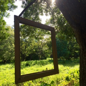 Framed Nature © 2016 Cynthia Pittmann