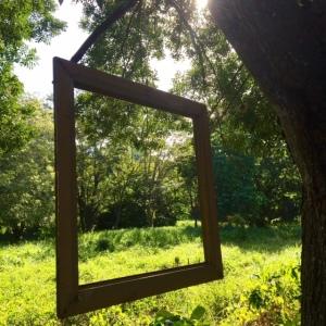 Framed Nature © 2016 Cynthia Pittmann